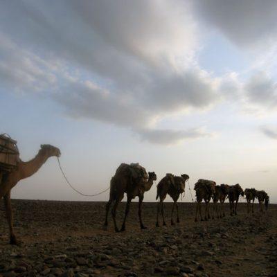 Etiopia Gran Tour, Nord e Sud
